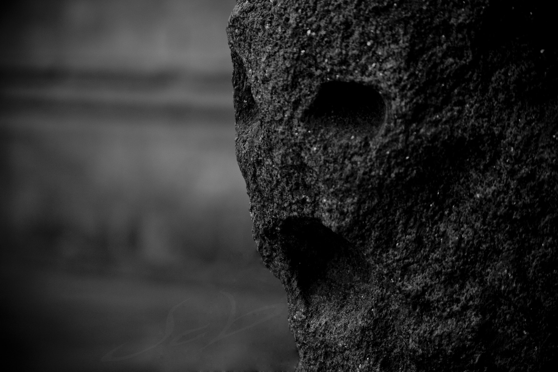 Photograph ~ petrified scream ~ by Jcb formo on 500px