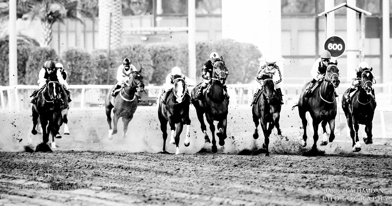 Photograph Challenge by jarrah alhamdan on 500px