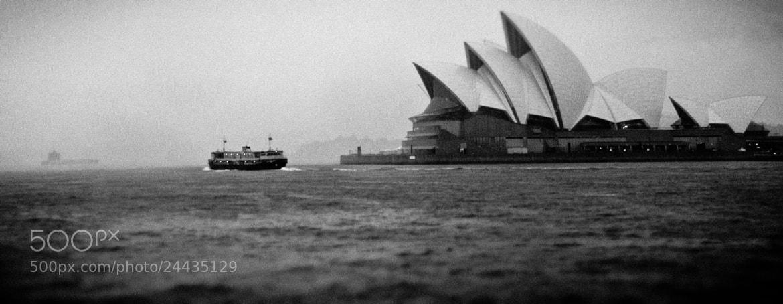 Photograph Sydney Opera House by David Psaila on 500px