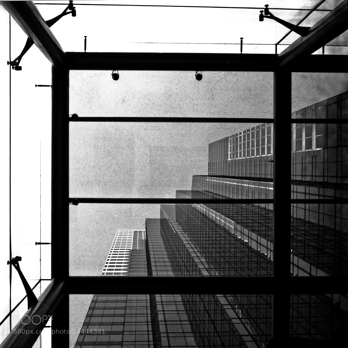 Photograph Through the glass by Gabriel Hernandez on 500px