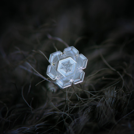 Real snowflake macro photo, Canon POWERSHOT A650 IS