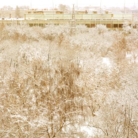 Time of year : winter., Nikon D7100, AF-S Nikkor 24-120mm f/4G ED VR