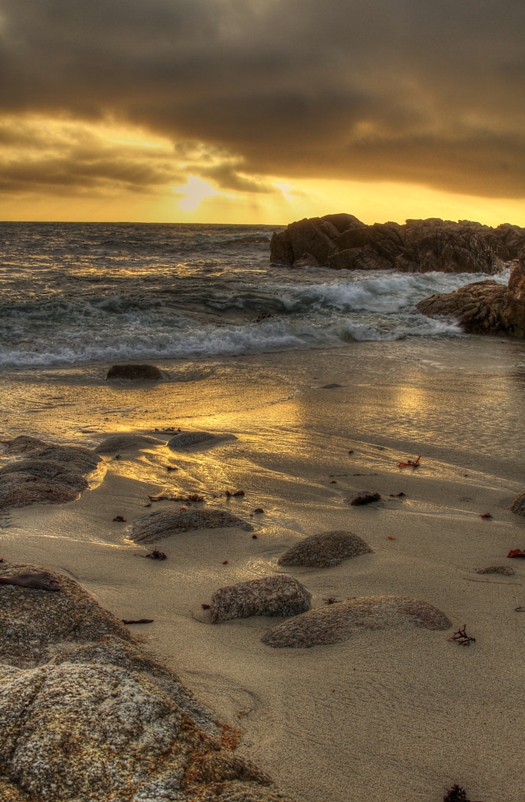 Photograph Asilomar State Beach by Scott Toste on 500px