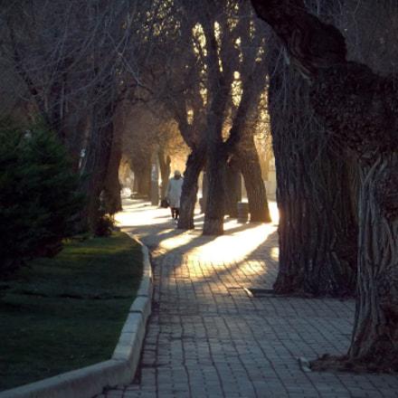street at sunset, Fujifilm FinePix JZ500