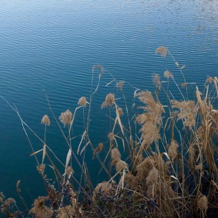 winter pond, Fujifilm FinePix F1000EXR