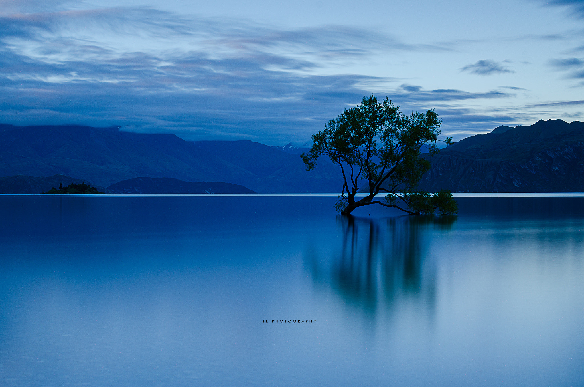 Photograph The Willow Tree by Tony Lim on 500px