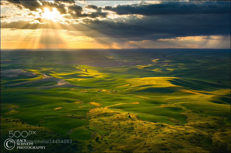 Photograph Golden Rays Over Palouse by Zack Schnepf on 500px