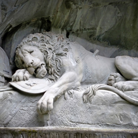 Dying Lion of Lucerne, Panasonic DMC-ZS8