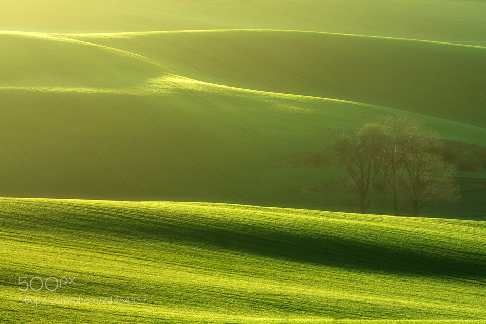Photograph Early spring by Marcin Sobas on 500px