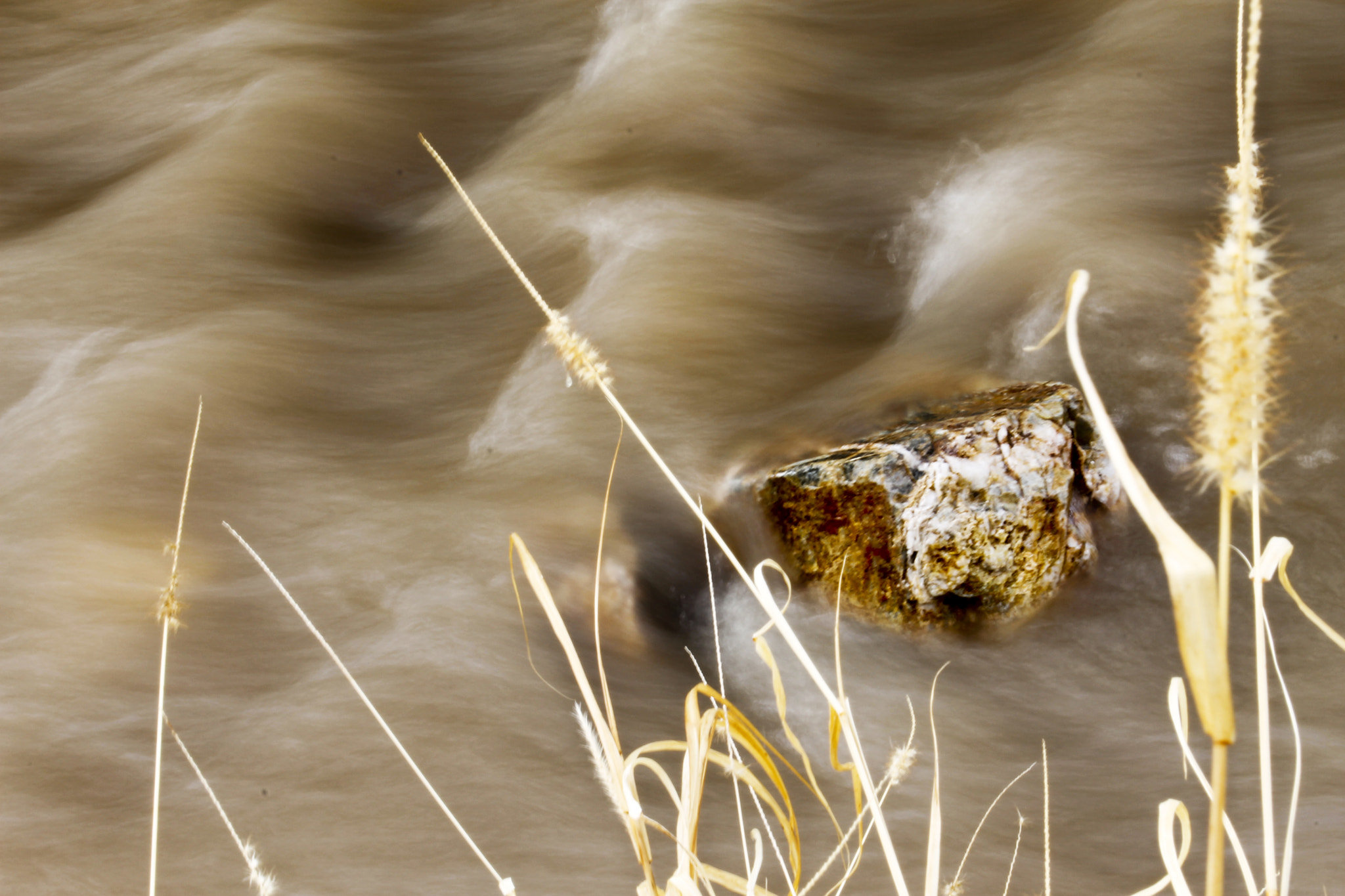 Photograph Submersion by the Bank by Jeremiah  Policky on 500px