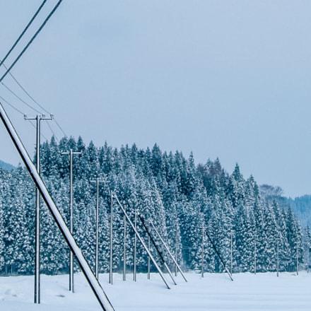 a snowy day, Fujifilm FinePix F700