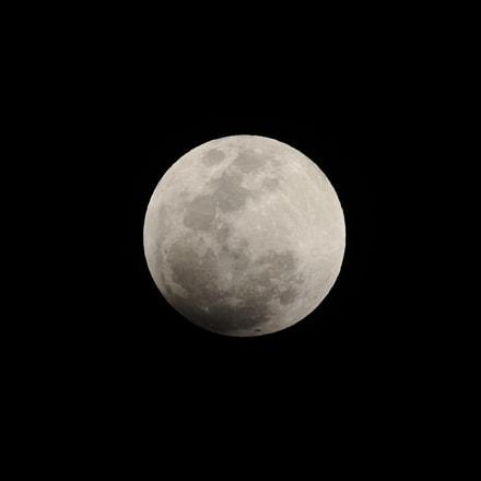 Untitled, Nikon D90, AF Zoom-Nikkor 80-200mm f/2.8D ED