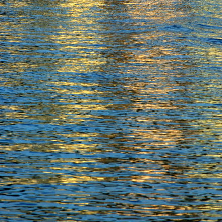 Untitled, Nikon D70S, AF Zoom-Nikkor 80-200mm f/2.8 ED