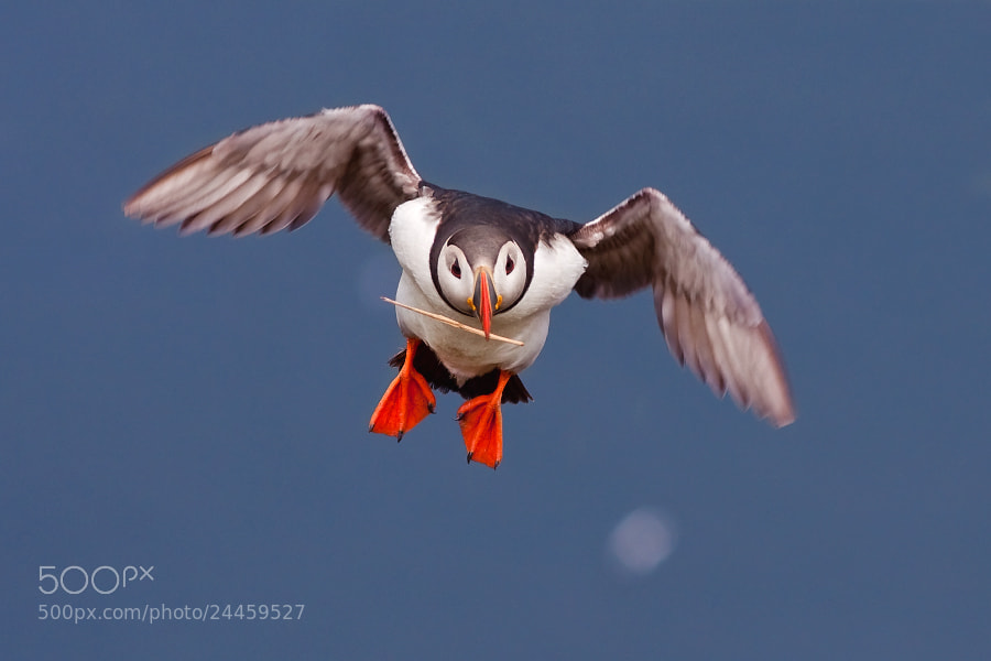 Photograph landing by Evzen Takac on 500px