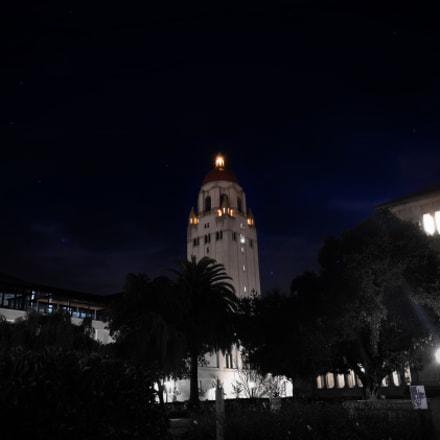 Rainy Night at Stanford, Nikon D500