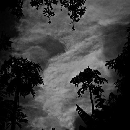 Untitled, Nikon COOLPIX L20