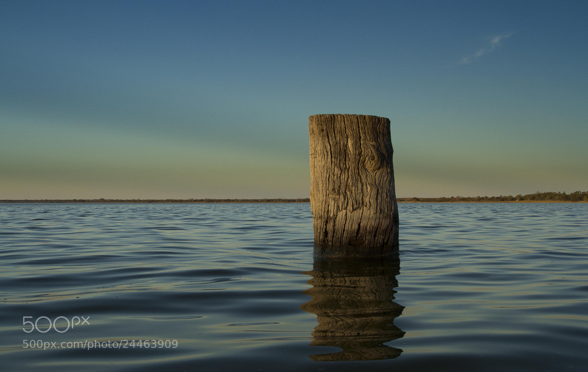 Photograph The Old Jumping Log by Gav McPherson on 500px