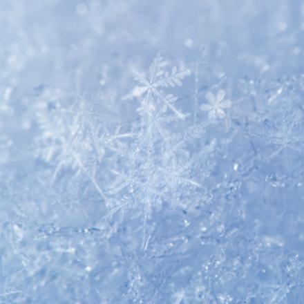 Snowdrift surface, Canon POWERSHOT A650 IS