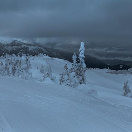 The Peak Lookout Whistler II