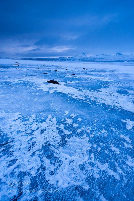Photograph The Frozen Plains by Adam Burton on 500px