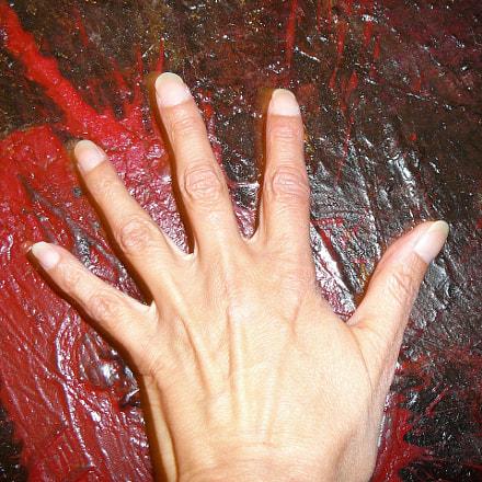 'Main sur............le Rouge peint, Panasonic DMC-TZ1