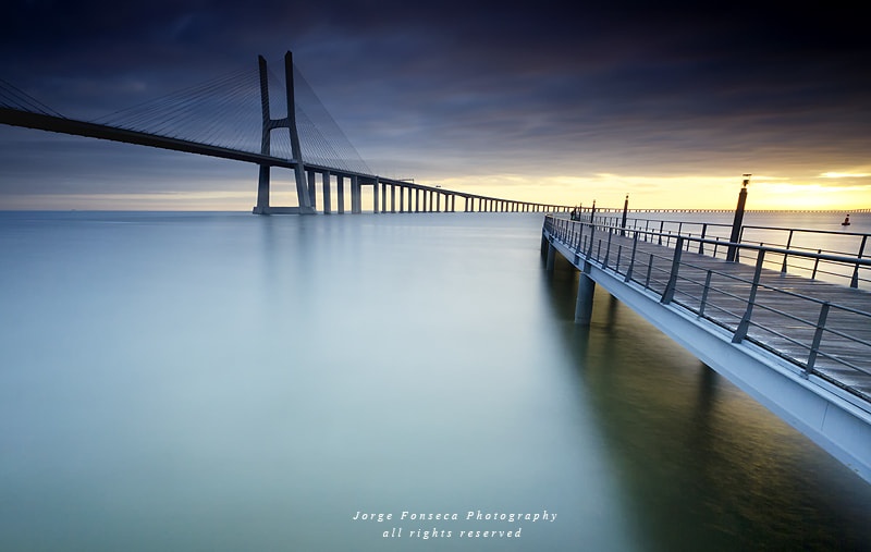 Photograph The path of light by Jorge Fonseca on 500px