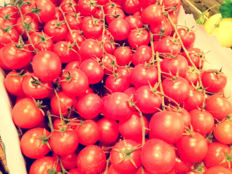 Photograph Tomatoes  by Harald Schuster on 500px