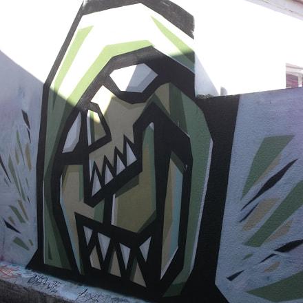 The Skull Scream Graffiti, Fujifilm FinePix JV250