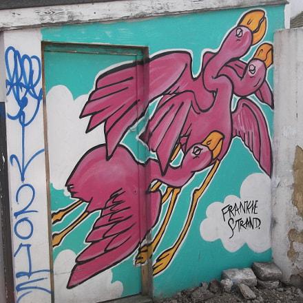 Frankie Strand Flying Flamingoes, Fujifilm FinePix JV250
