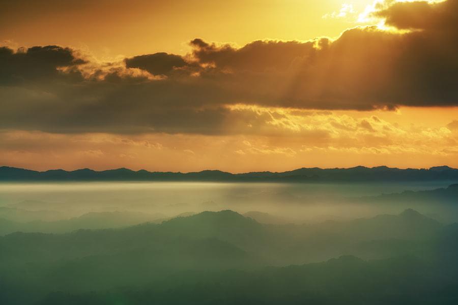 Shine on the fog, автор — mono Pix на 500px.com