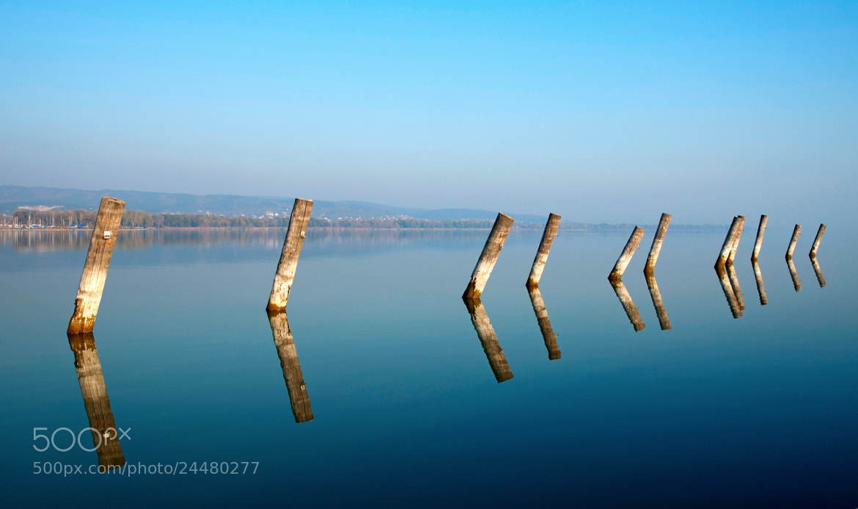 Photograph Piles in Lake Balaton,Hungary  by pallgabor57 on 500px