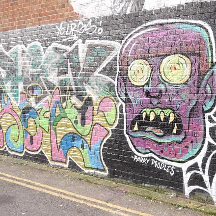 Parky Doodles Monster Face, Fujifilm FinePix JV250