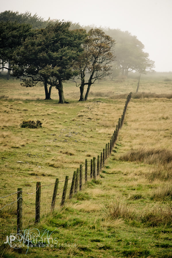 Photograph Hillside fence by John Paul Williams on 500px