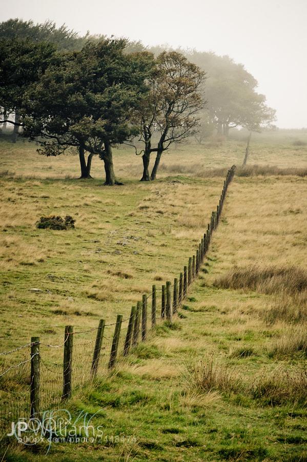 Photograph Hillside fence by John Paul Williams on 500px