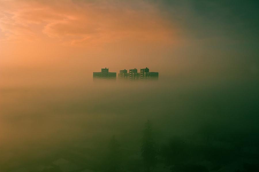 Foggy city, автор — Андрей Петрусь на 500px.com