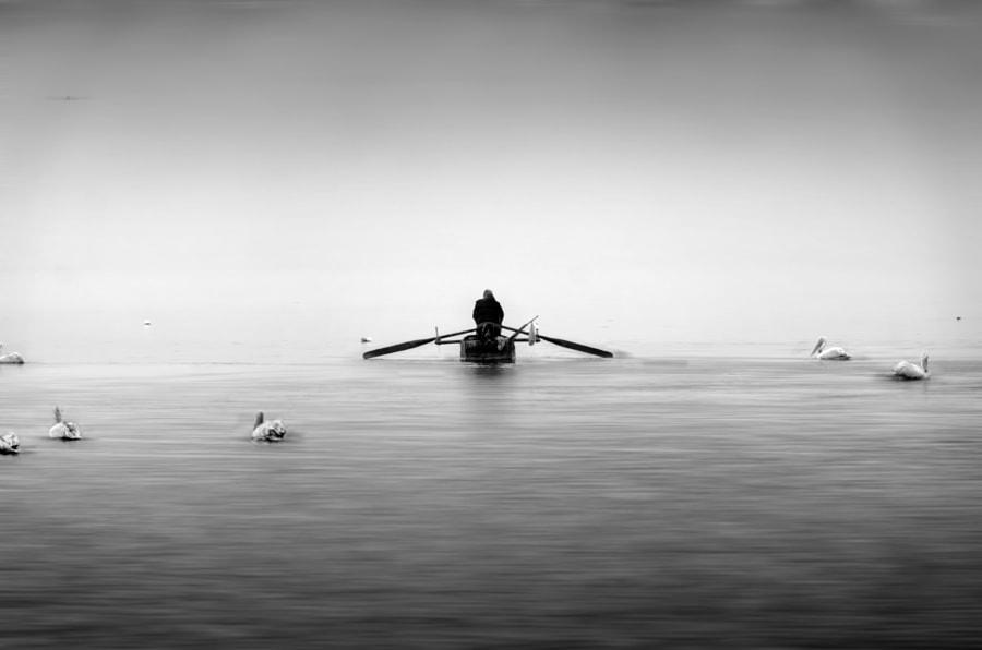 Alone in the Lake, автор — Ioannis Ioannidis на 500px.com
