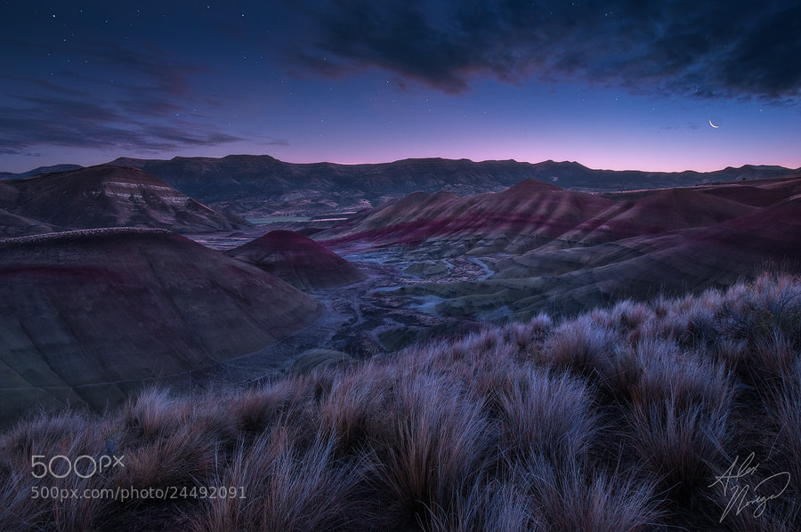 Photograph Painted Twilight by Alex Noriega on 500px