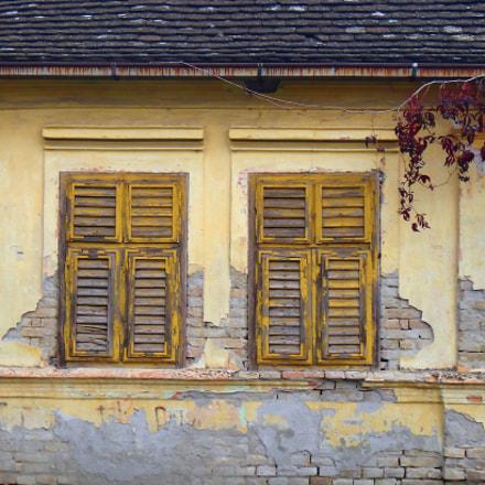 Yellow Windows, Sony DSC-TX10