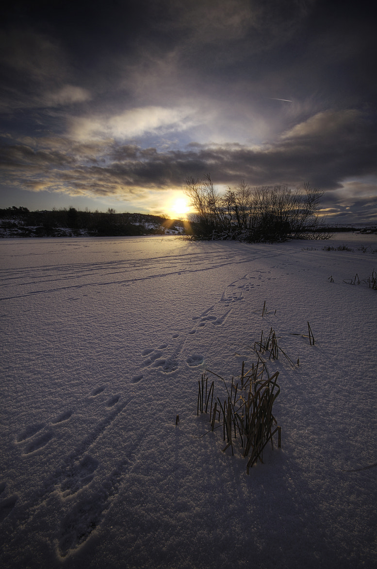 Photograph Snow Prints by Johnny Graham on 500px