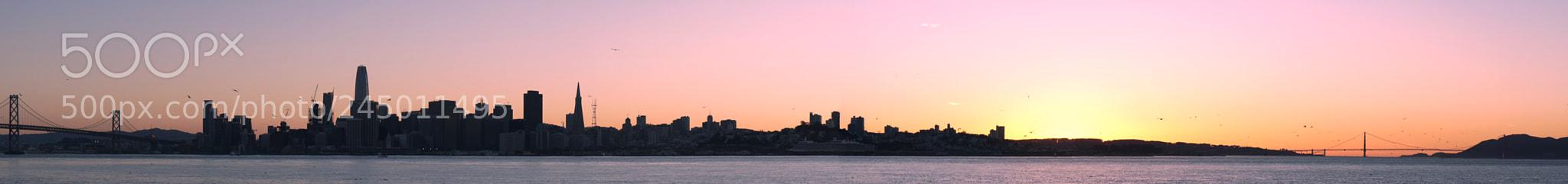 SF Skyline #2