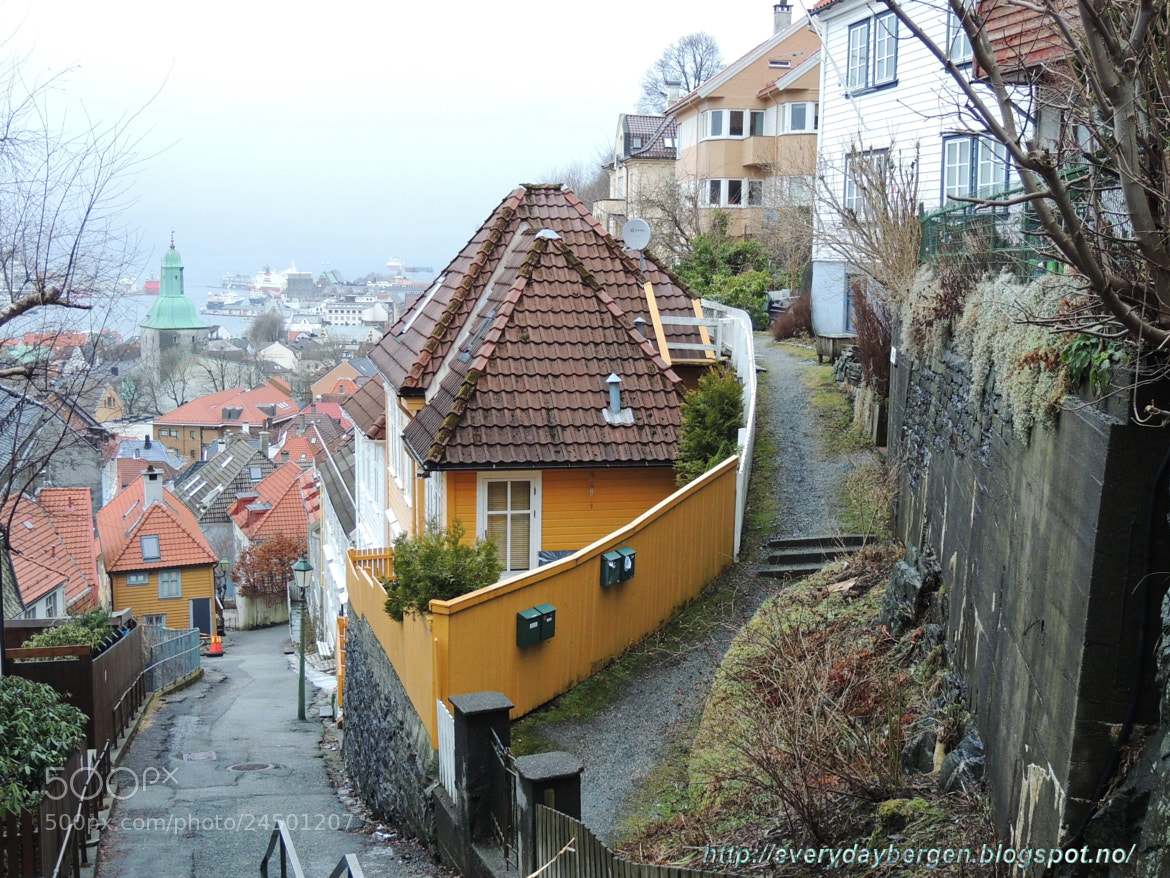 Photograph Piece of Bergen by Inna Cleanbergen on 500px
