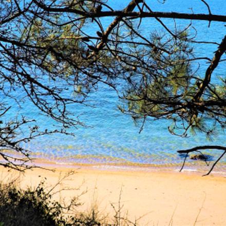 beach, Fujifilm FinePix SL245