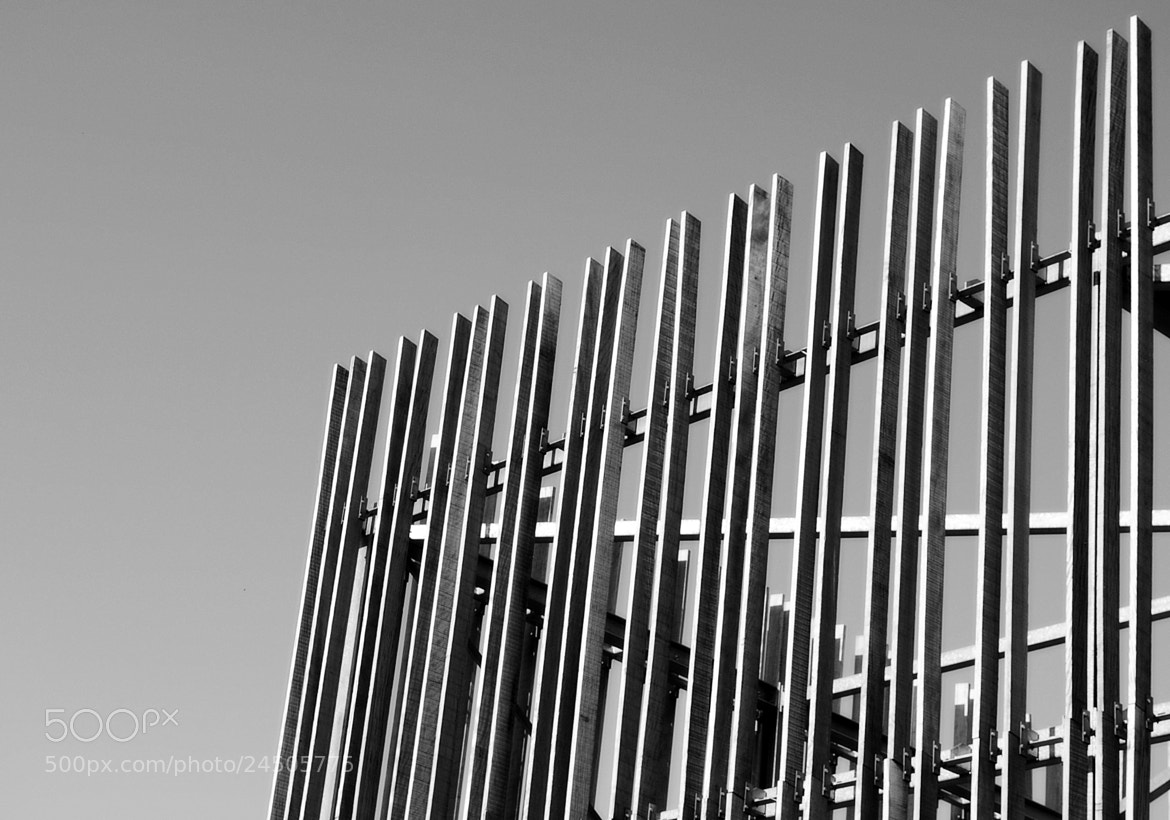 Photograph Lines by Yann VDM on 500px
