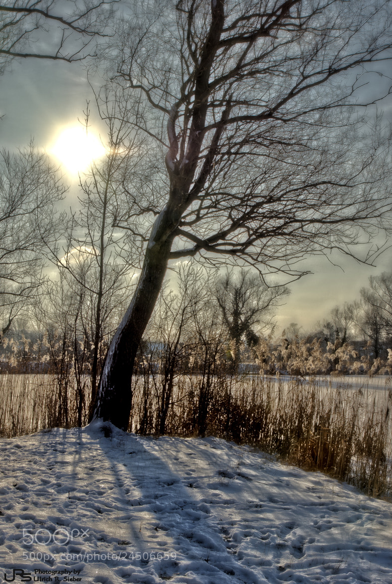 Photograph Winter sun by Ulrich R. Sieber on 500px