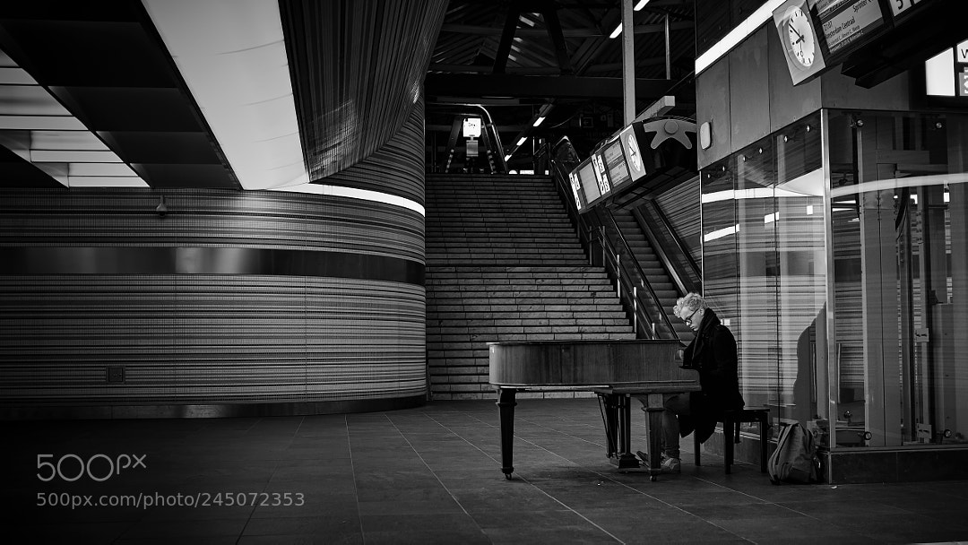The piano player.