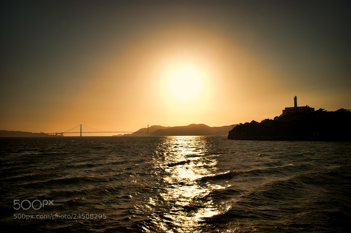 Photograph Golden Golden Gate by Tony Jones on 500px