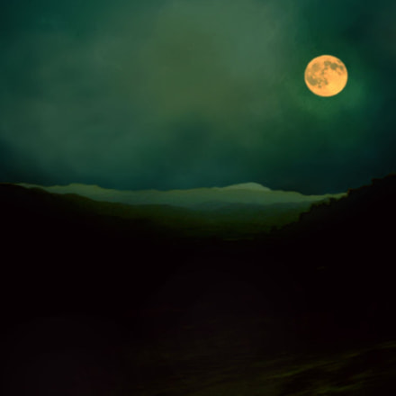 full moon, Nikon E5000
