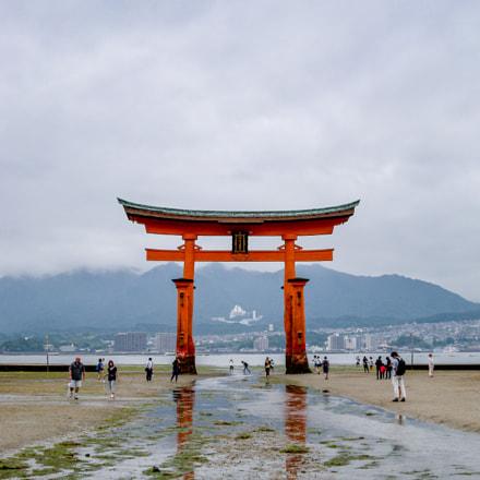 Japan, Nikon COOLPIX P6000