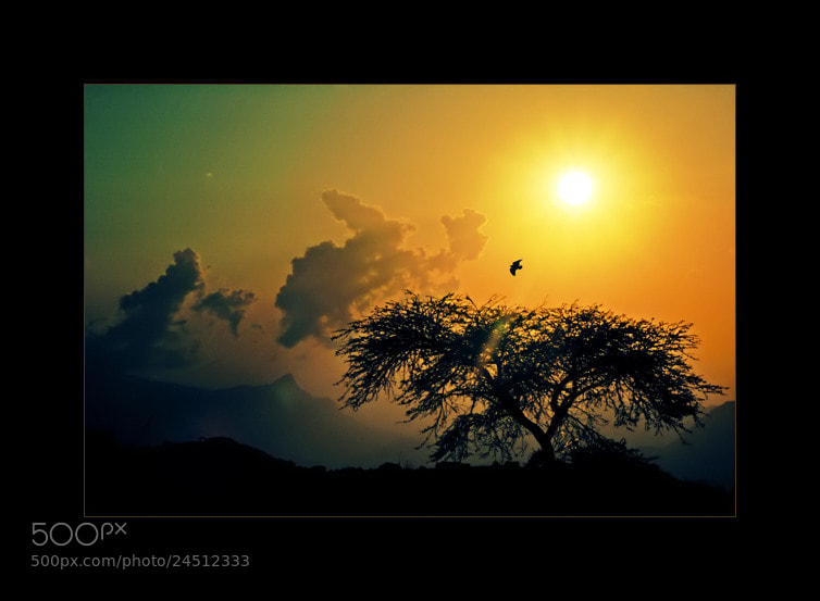 Photograph Sunset color by Mohammed Bin_Saleh on 500px