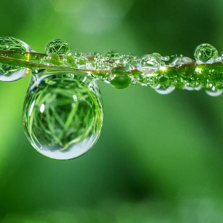 Water drop5